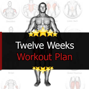 12 Weeks Workout Plan