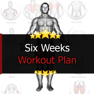 6 Weeks Workout Plan